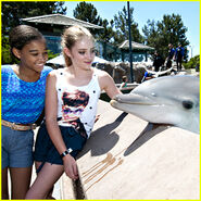 Amandla-willow-seaworld-visit