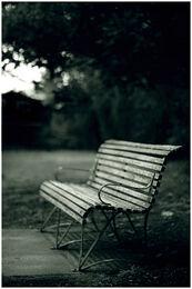 Park Bench by hiritai