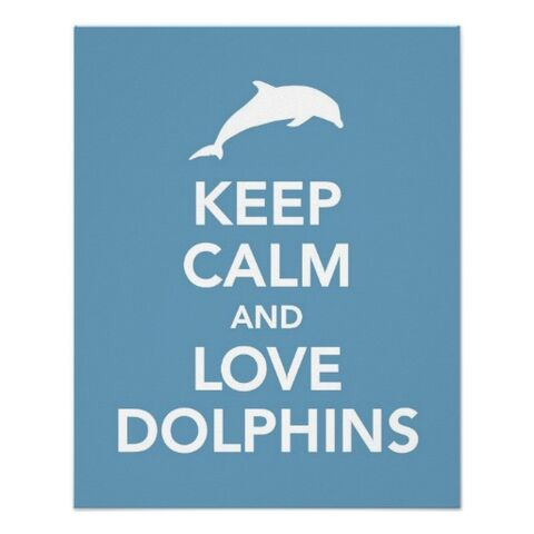 File:Keep calm and love dolphins.jpg