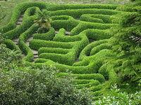D188c1b2f47 labyrinth1