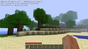 Screenshot for des' seed 1