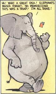 Calvin the Elephant 3