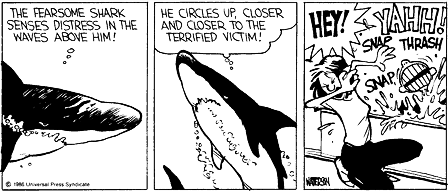 File:Calvin the Shark.png