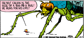 File:Calvin In Twofold Insect-Size Form.png
