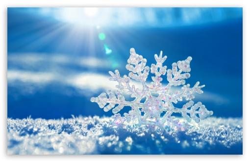 File:Snowflake-t2.jpg