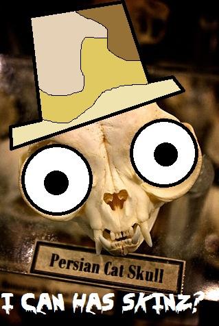 File:Skin-taker-cat-meme-pyrogothnerd.jpg