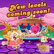New levels announcement 80