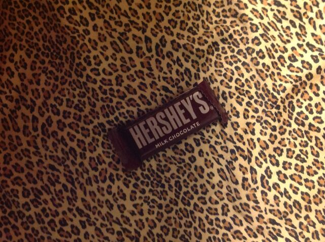 File:Hershey mini milk chocolate candy bar.jpeg