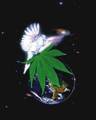 File:Dove cannabis earth.jpg