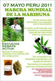 Peru 2011 GMM 3