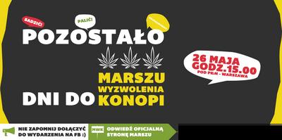 Warsaw 2012 GMM Poland 4