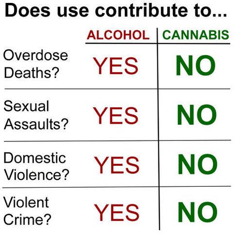 File:Alcohol versus cannabis.jpg