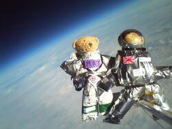 Teddies in Space