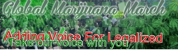 File:Global Marijuana March 10.jpg