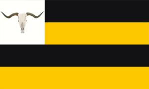 NC Flag v1