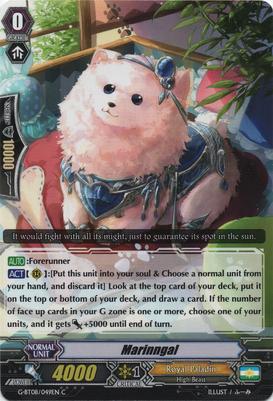 G-BT08-049EN-C
