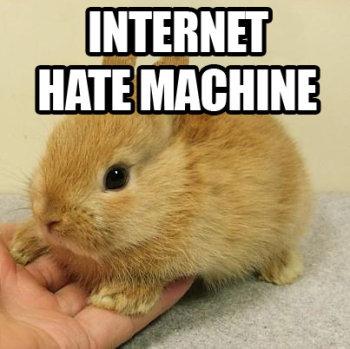 File:Bunny Internet.jpg