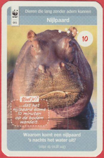 001nijlpaard