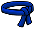 File:Blue Belt.png