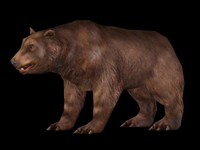 Bear | Carnivores Wiki | FANDOM powered by Wikia