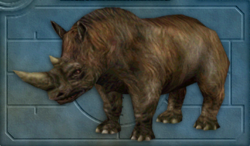 Carnivores Ice Age Woolly rhinoceros