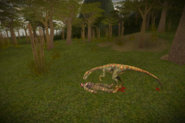 Troodon5