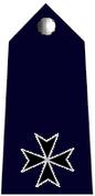 Inspector badge