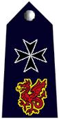 Commissioner badge