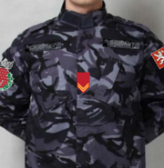 Royal Guard field uniform