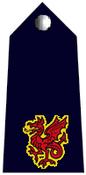 Commander badge