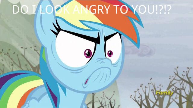 File:Rainbow Dash angry meme.jpg
