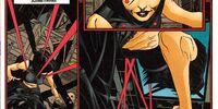 Batgirl (13)