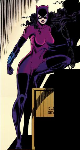 File:Catwomansuitvr3 5.png