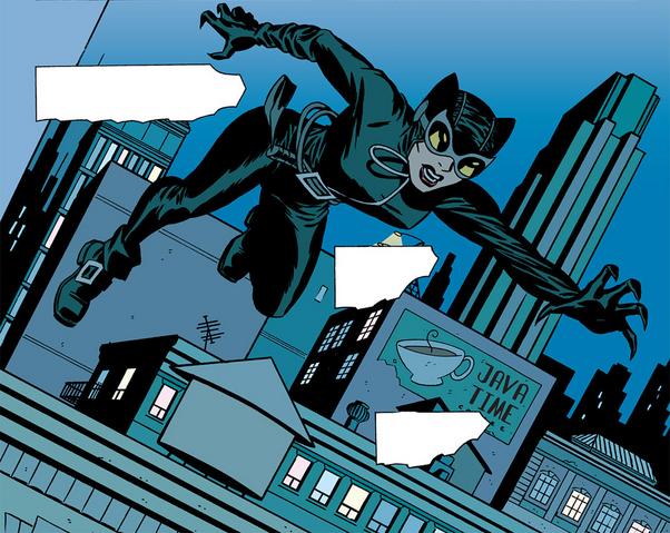 File:Catwomansuitvr5 5.png