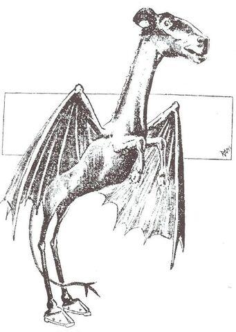 File:Jersey Devil - 01.jpg