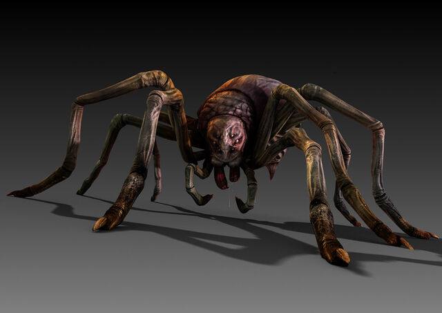 File:LoS Spider rendered.jpg