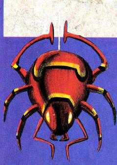 NP C3 Spider