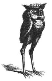Dictionnaire Infernal - 57 - Stolas - 01