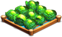 File:CabbageIrrigated 02.png