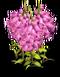 Flower 04 Icon