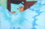 CatDog Surfing Out