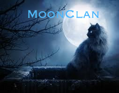 MoonClan Picture