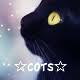 COTS Logo 2