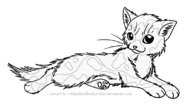 Longhaired tortie f lineart by wildpathofshadowclan-d2xmz1f
