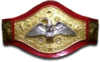 DMWFantasytitlebelt