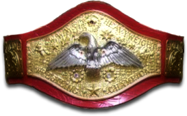 File:DMWFantasytitlebelt.png