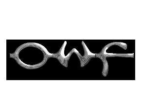 File:OWF chrome logo test copy.png