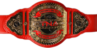 TNXA Knockouts Tag Team Championship