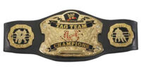 World Tag Team Championship (New-WWE)