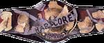 TNXA Hardcore Championship